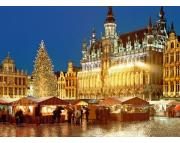 Kerstmarkt Brussel 21 t/m 22 december
